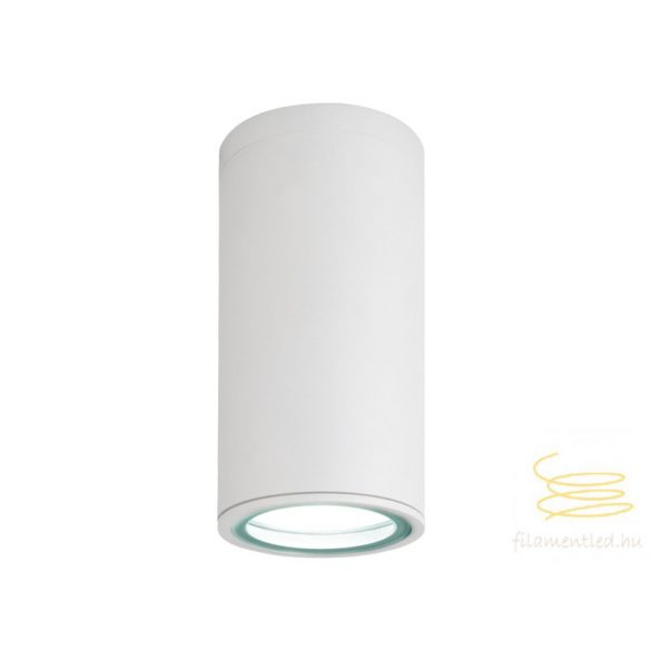 Viokef Outdoor white ceiling lamp Sotris 4053801